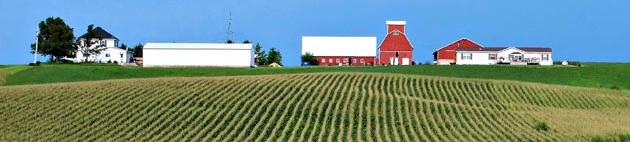 aaa Farm1
